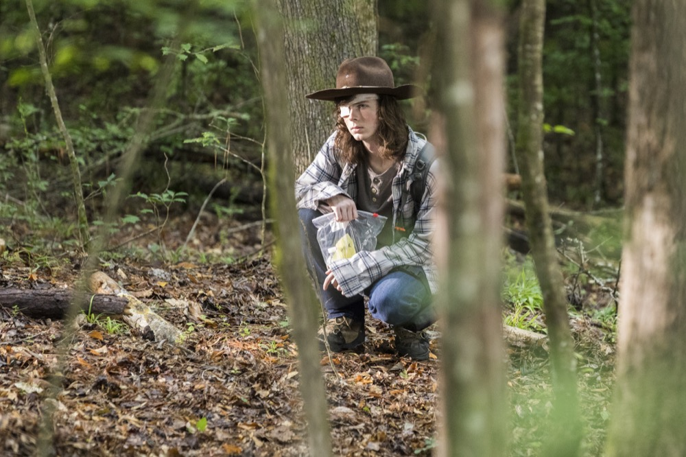 Chandler Riggs as Carl Grimes - The Walking Dead _ Season 8, Episode 6 - Photo Credit: Jackson Lee Davis/AMC